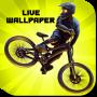 icon Bike Mayhem Live Wallpaper
