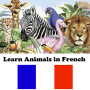 icon Animals in French