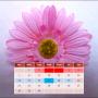 icon My Menstrual Diary
