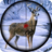 icon Animal Hunitng 2019 1.2