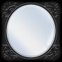 icon Mirror - Zoom & Exposure -