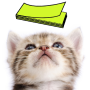 icon Cat Sticky Notes Notepad